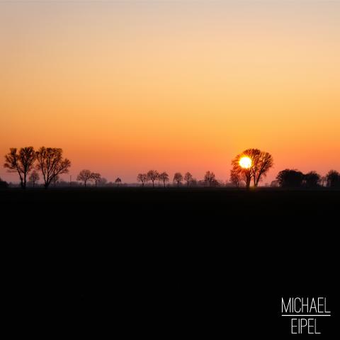 Sonnenuntergang mit Silhouette der Bäume – Landschaftsfotografie