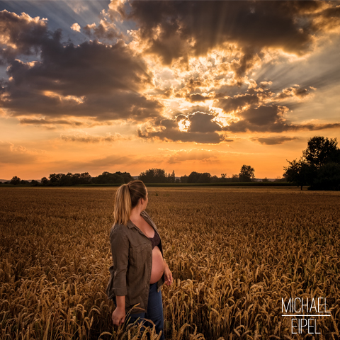 Babybauch Shooting im Getreidefeld bei Sonnenuntergang – Portraitfotografie