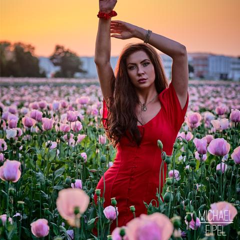 Julia im Mohnfeld im Sonnenuntergang – Portrait
