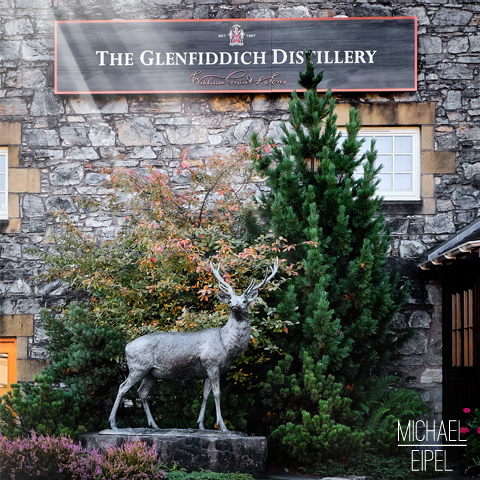 The Glenfiddich destillery deer – Scotland